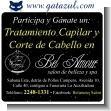 Participa y Gana un excelente Tratamiento Capilar y Corte de Cabello completamente gratis!
